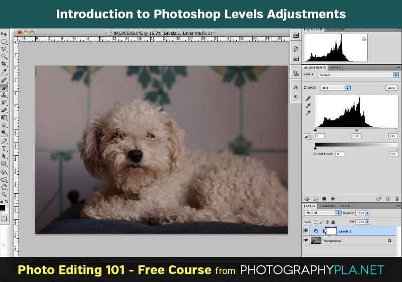 Introduction to Photoshop Levels Adjustments