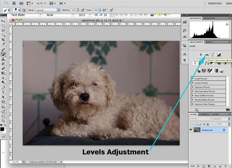Photoshop Levels Adjustment