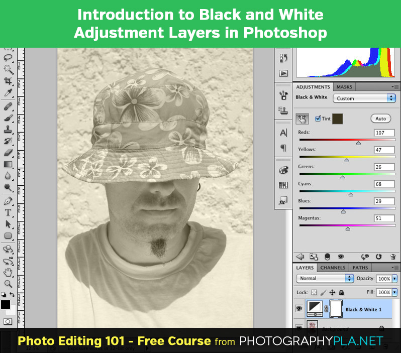Introduction to Black and White Adjustment Layers in Photoshop