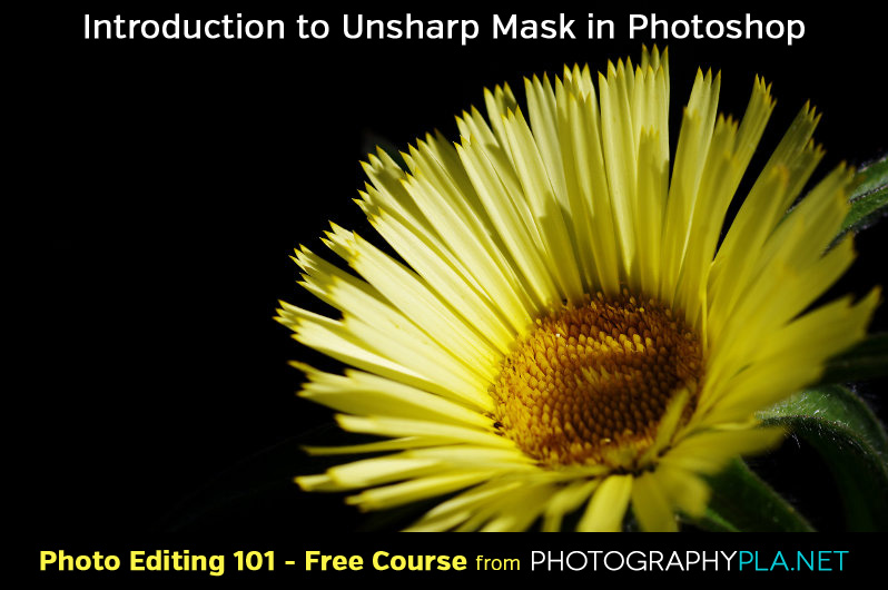 Introduction to the Unsharp Mask in Photoshop
