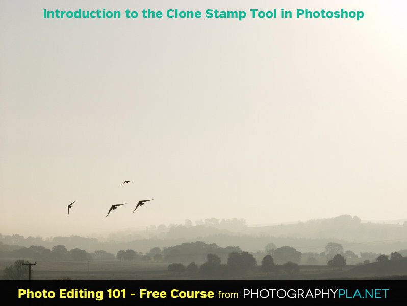 Introduction to the Clone Stamp Tool in Photoshop
