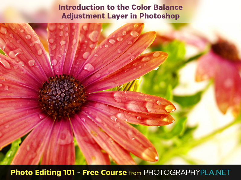 Introduction to the Color Balance Adjustment Layer in Photoshop
