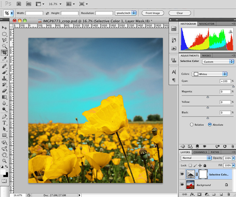 Introduction to Selective Color Adjustment Layers in Photoshop