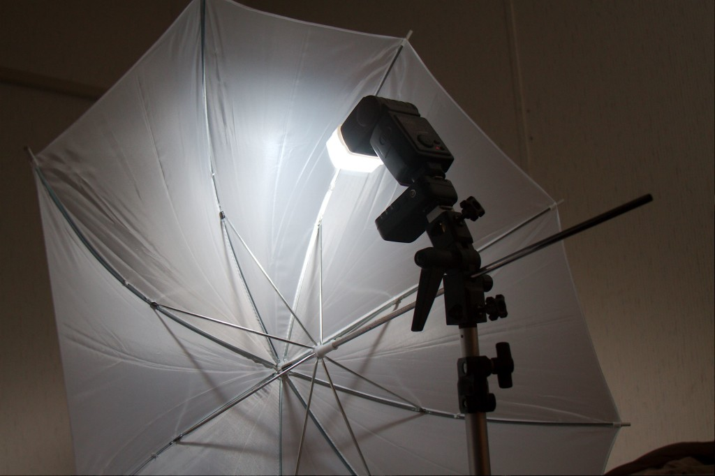An introductory lighting setup for portrait photography. A portable strobe, wireless controller and shoot-through white umbrella.