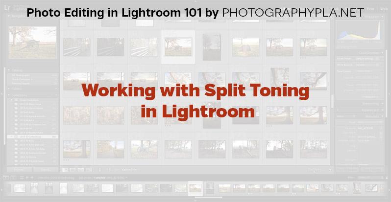 Working with Split Toning in Lightroom