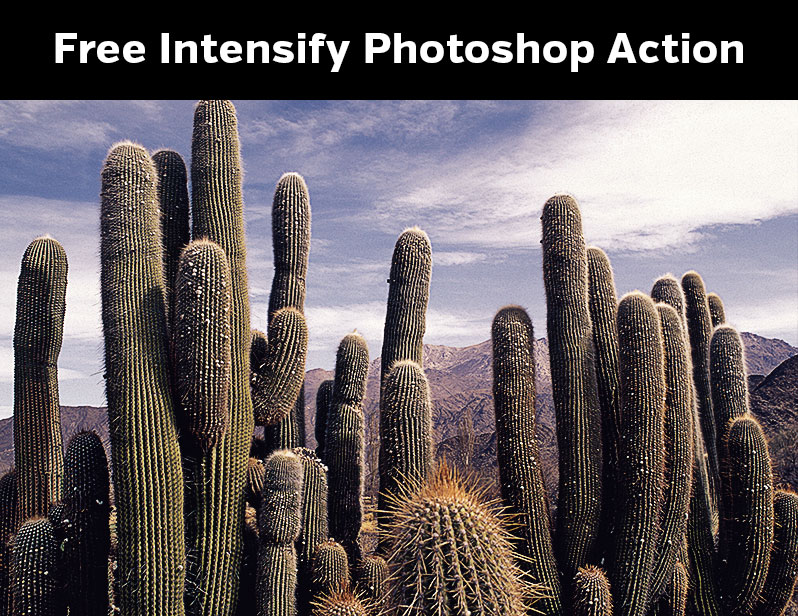 Free Intensify Photoshop Action